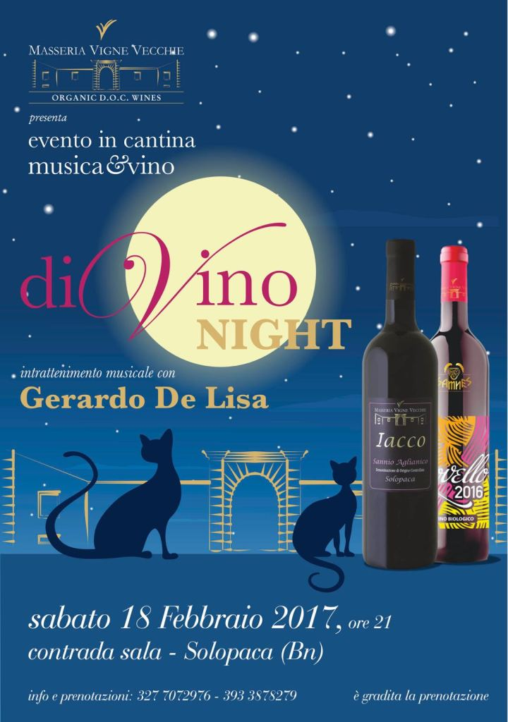divino night